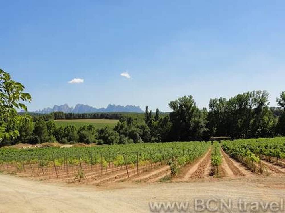 Montserrat Food Wine Tour 8res 1