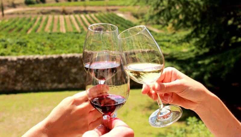 Penedes Wine Tour 1 1