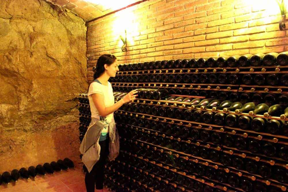 Penedes Wine Tour 5 1