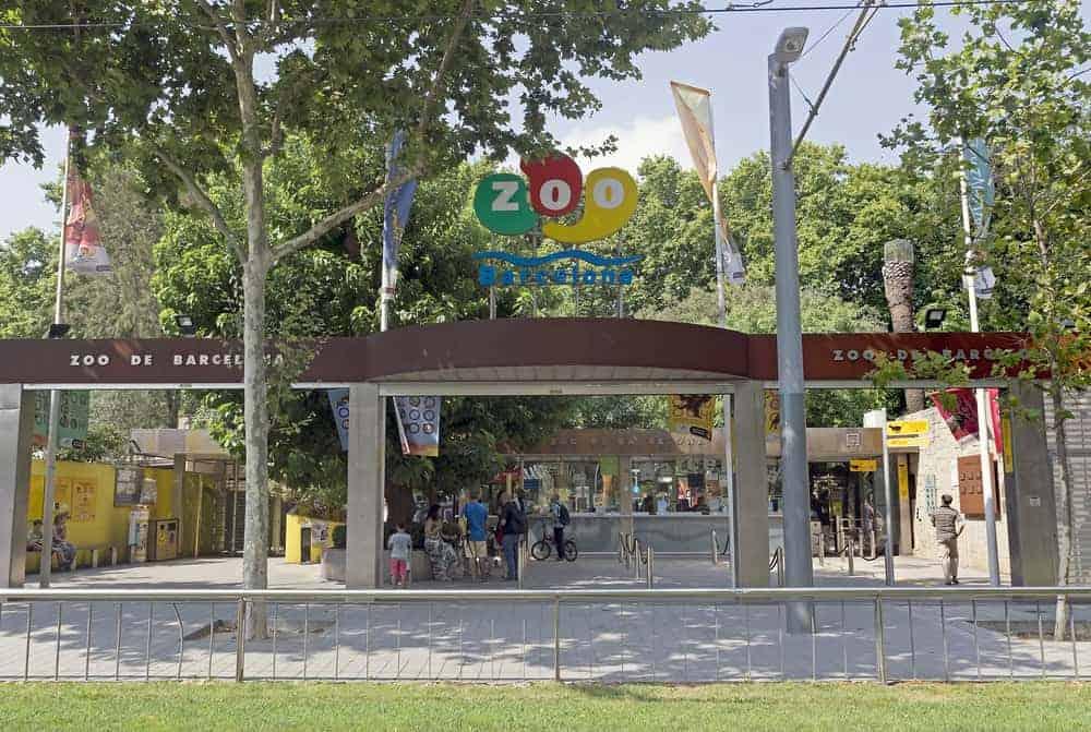 Barcelona Zoo 4