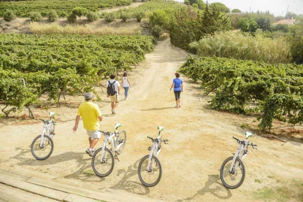 Ebike Beach Wine 4 1