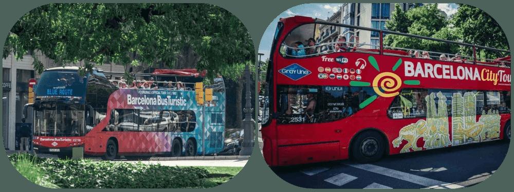 Hop On Hop Off Both Busses 1 2
