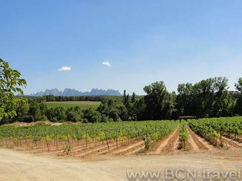 Montserrat Food Wine Tour 8res 1