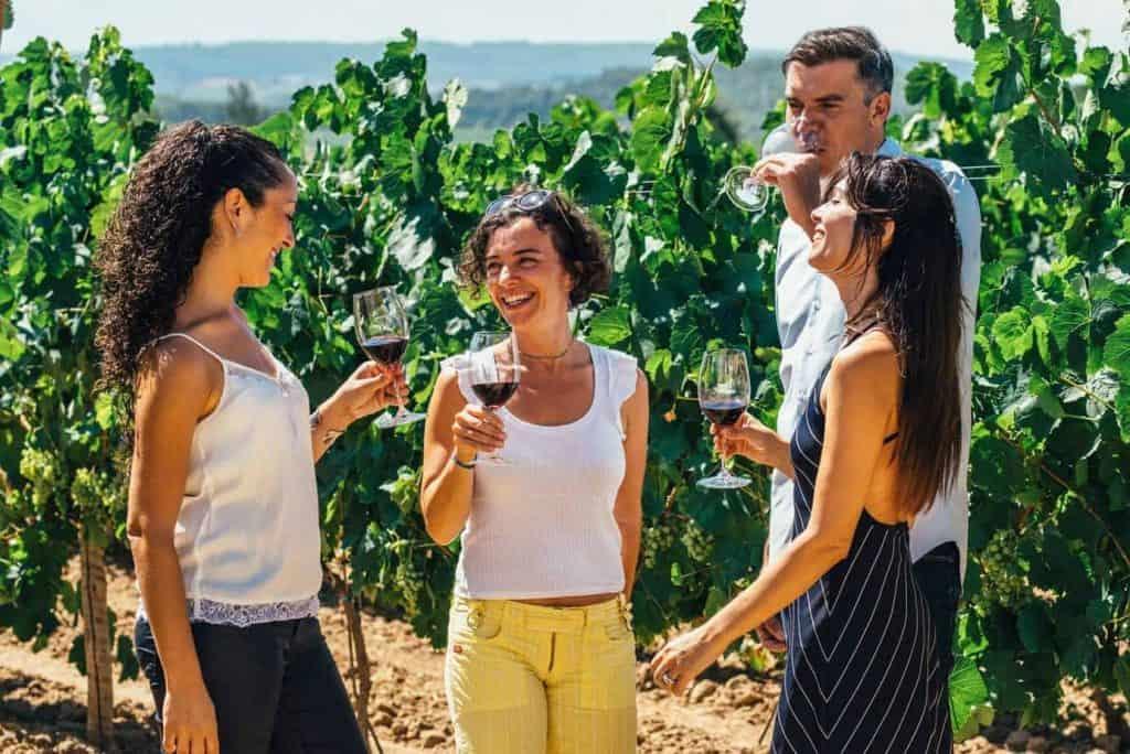 Wine Cava Premium Experience 2 1