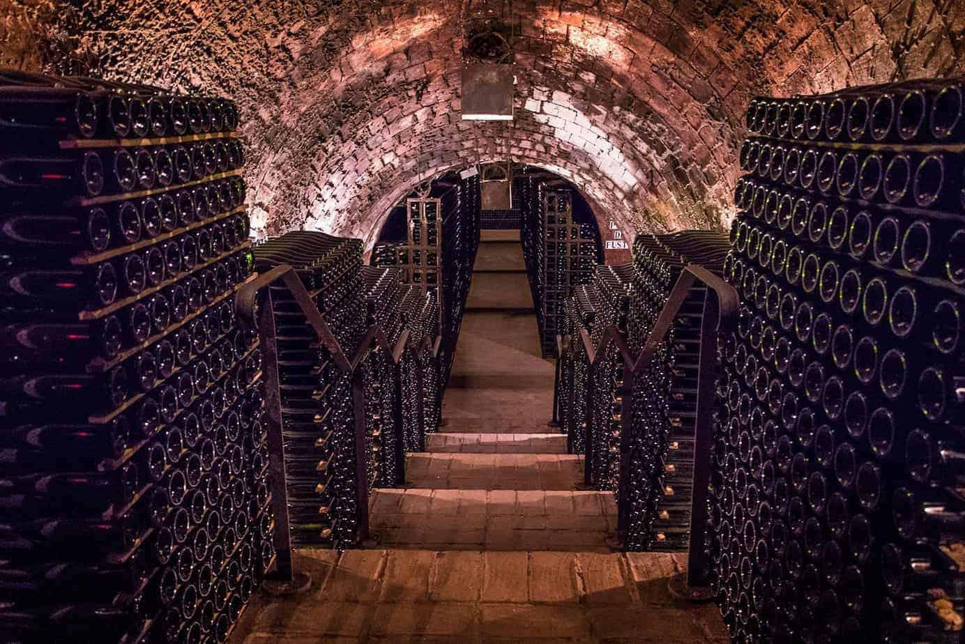 Wine Cava Premium Experience 3 2