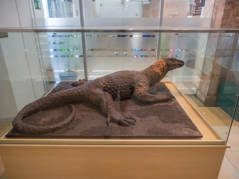 A Chocolate Lizard Display In The Chocolate Museum of Barcelona