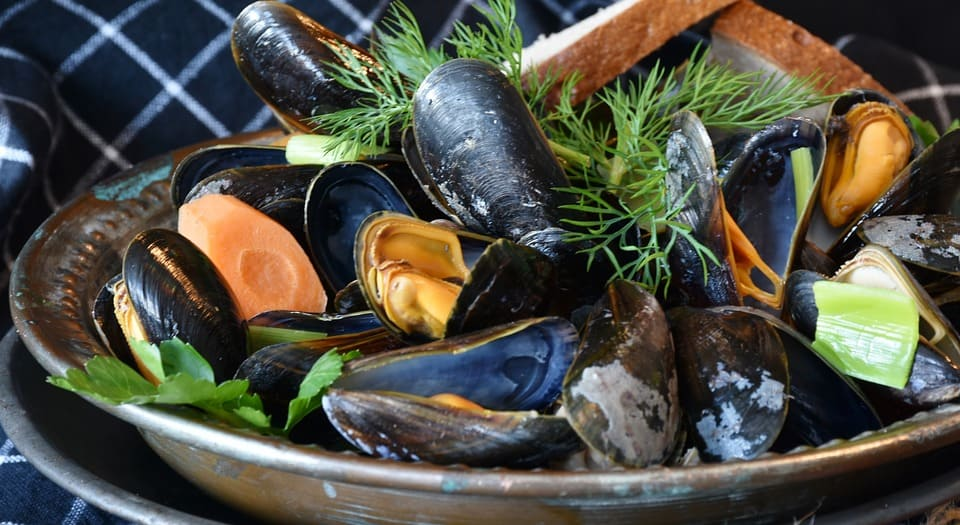 Mussels 3148452 960 720