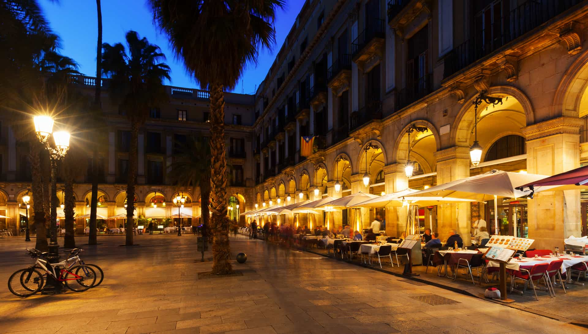 Placa Reial In Winter